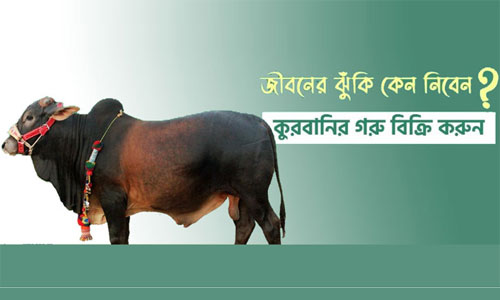 'Digital cattle haat' opens at govt initiative